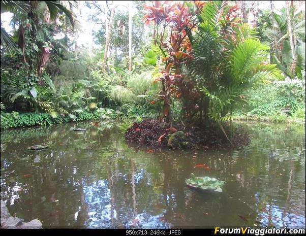Hawaii Islands - Take your time!!! (agosto 2012)-img_2194.jpg
