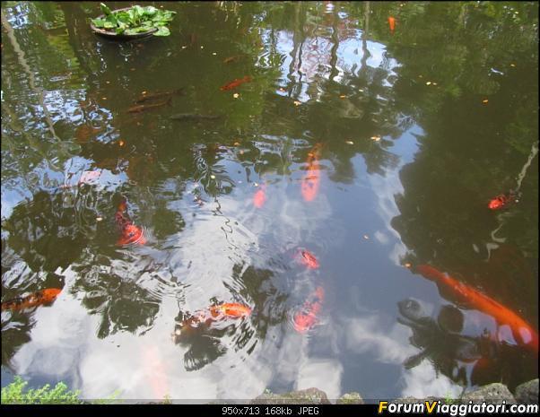 Hawaii Islands - Take your time!!! (agosto 2012)-img_2195.jpg