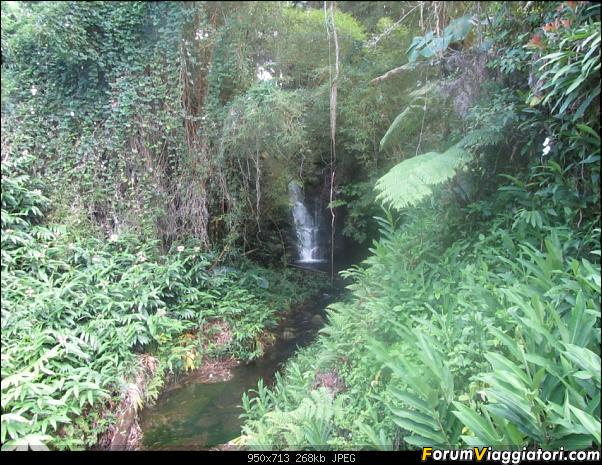 Hawaii Islands - Take your time!!! (agosto 2012)-img_2207.jpg