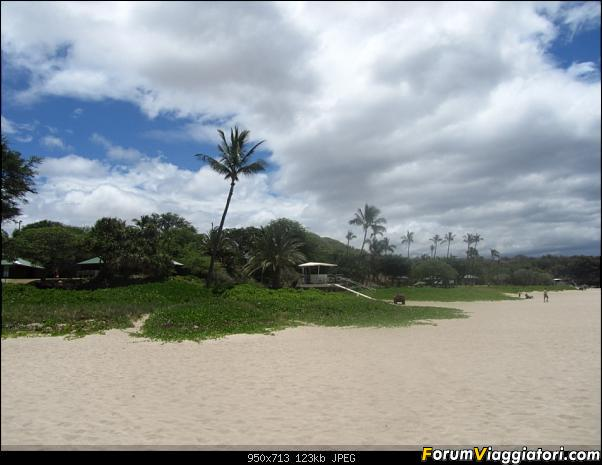 Hawaii Islands - Take your time!!! (agosto 2012)-img_2238.jpg