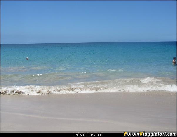 Hawaii Islands - Take your time!!! (agosto 2012)-img_2241.jpg