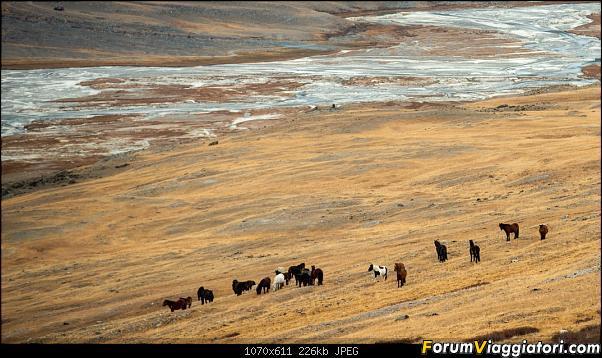 Nomadi e steppe, aquile e montagne: un viaggio in Mongolia-_dsc4845.jpg