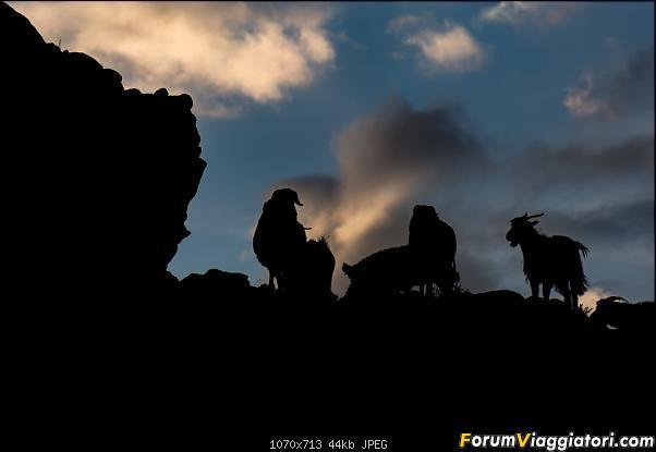 Nomadi e steppe, aquile e montagne: un viaggio in Mongolia-_dsc4988.jpg