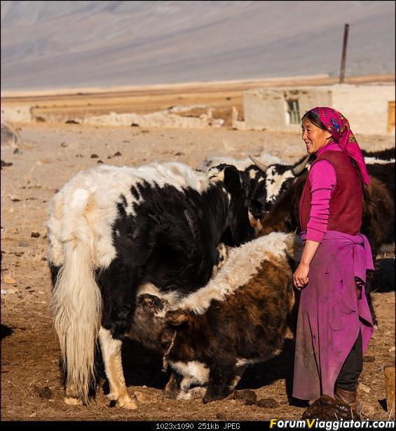 Nomadi e steppe, aquile e montagne: un viaggio in Mongolia-_dsc5071.jpg