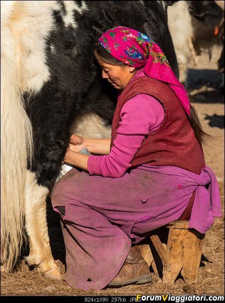 Nomadi e steppe, aquile e montagne: un viaggio in Mongolia-_dsc5073.jpg
