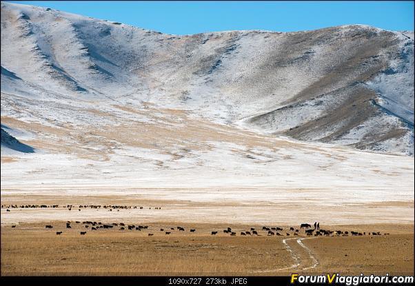Nomadi e steppe, aquile e montagne: un viaggio in Mongolia-_dsc5115.jpg