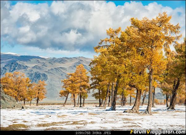 Nomadi e steppe, aquile e montagne: un viaggio in Mongolia-_dsc5126.jpg