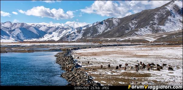 Nomadi e steppe, aquile e montagne: un viaggio in Mongolia-_dsc5141.jpg