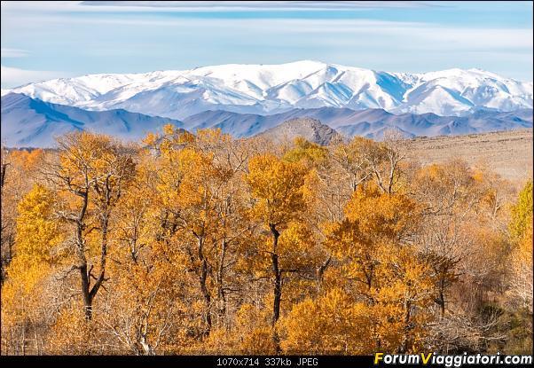 Nomadi e steppe, aquile e montagne: un viaggio in Mongolia-_dsc5236.jpg