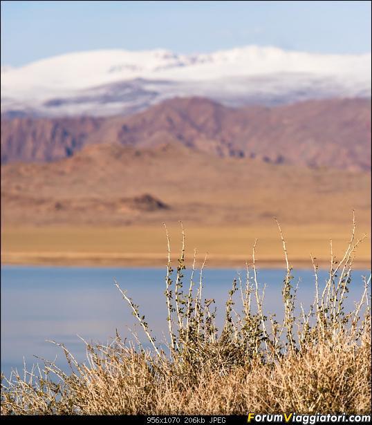 Nomadi e steppe, aquile e montagne: un viaggio in Mongolia-_dsc5325.jpg