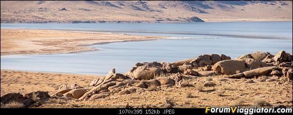 Nomadi e steppe, aquile e montagne: un viaggio in Mongolia-_dsc5327.jpg