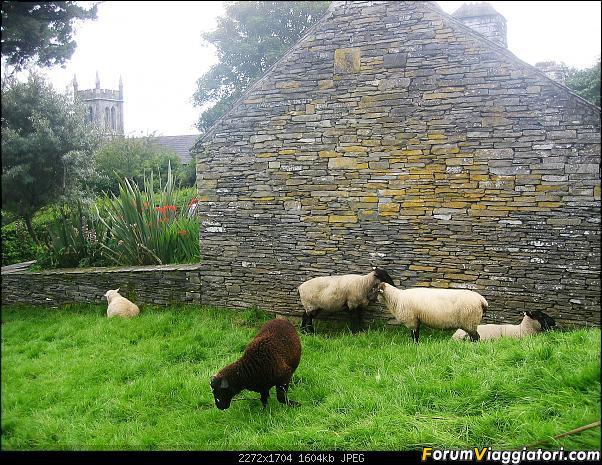 2 settimane nella verde IRLANDA-102-.jpg