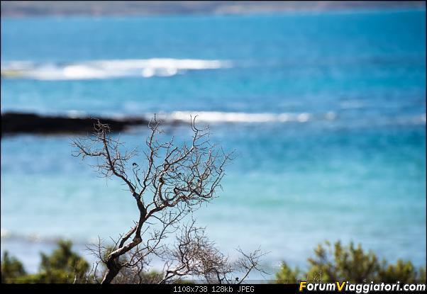 In Patagonia verso la fin del mundo-_dsc5757.jpg