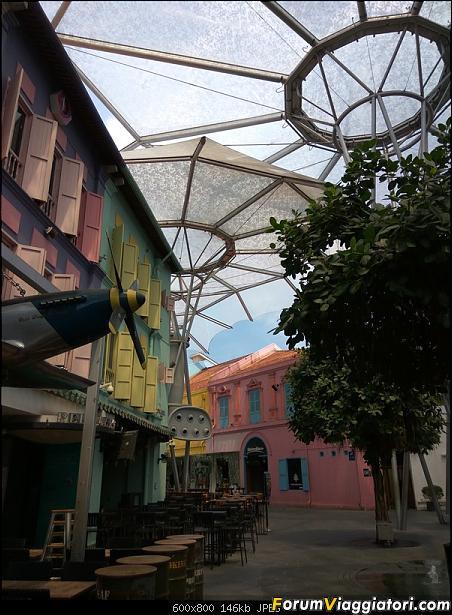 [Singapore e Borneo Malese] - Sulle tracce di Sandokan - Agosto 2017-img_20170804_120719.jpg