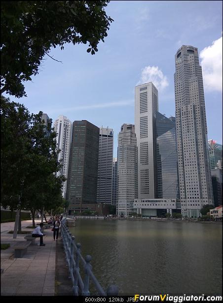 [Singapore e Borneo Malese] - Sulle tracce di Sandokan - Agosto 2017-img_20170804_122646.jpg
