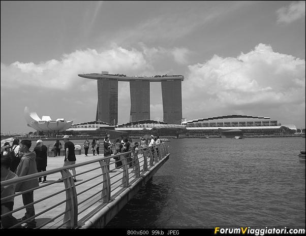 [Singapore e Borneo Malese] - Sulle tracce di Sandokan - Agosto 2017-img_20170804_132009.jpg