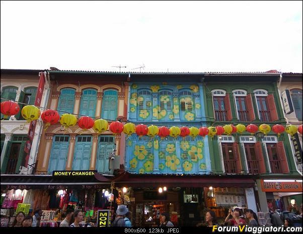 [Singapore e Borneo Malese] - Sulle tracce di Sandokan - Agosto 2017-img_20170804_185323.jpg