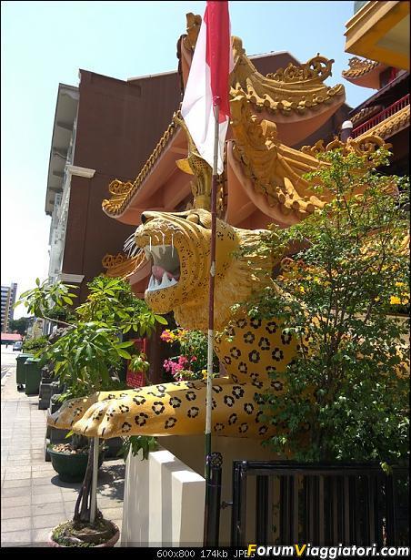 [Singapore e Borneo Malese] - Sulle tracce di Sandokan - Agosto 2017-img_20170805_131614.jpg