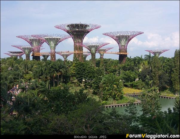[Singapore e Borneo Malese] - Sulle tracce di Sandokan - Agosto 2017-img_20170805_160916.jpg