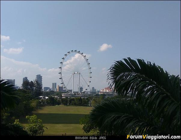[Singapore e Borneo Malese] - Sulle tracce di Sandokan - Agosto 2017-img_20170805_161103.jpg