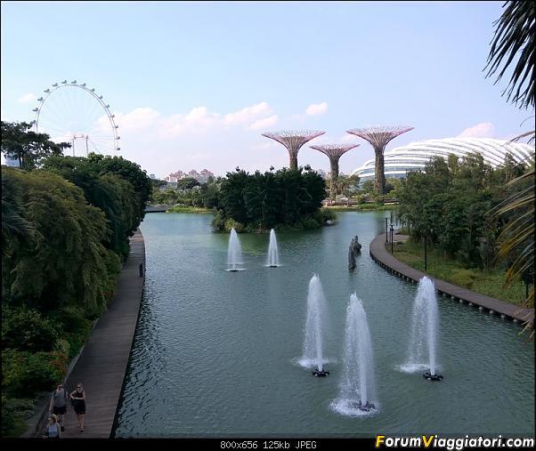 [Singapore e Borneo Malese] - Sulle tracce di Sandokan - Agosto 2017-img_20170805_163111_hdr-2-.jpg
