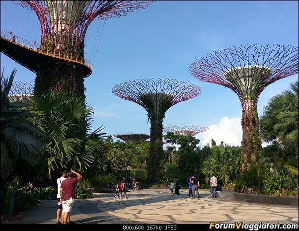 [Singapore e Borneo Malese] - Sulle tracce di Sandokan - Agosto 2017-img_20170805_165507_hdr.jpg