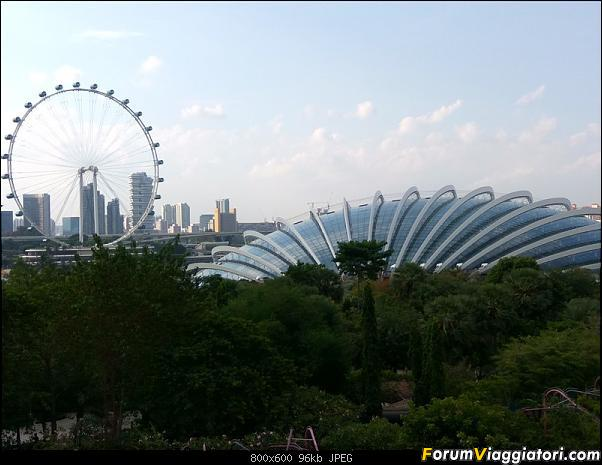 [Singapore e Borneo Malese] - Sulle tracce di Sandokan - Agosto 2017-img_20170805_172920_hdr.jpg