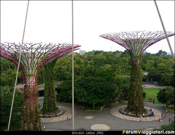 [Singapore e Borneo Malese] - Sulle tracce di Sandokan - Agosto 2017-img_20170805_173256_hdr.jpg