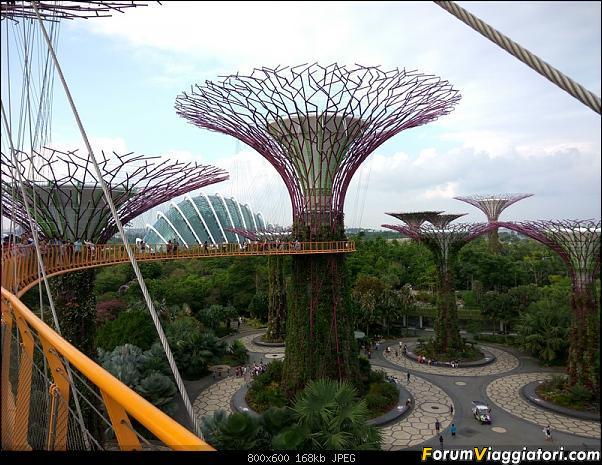 [Singapore e Borneo Malese] - Sulle tracce di Sandokan - Agosto 2017-img_20170805_173750_hdr.jpg