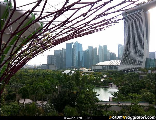 [Singapore e Borneo Malese] - Sulle tracce di Sandokan - Agosto 2017-img_20170805_173813_hdr.jpg