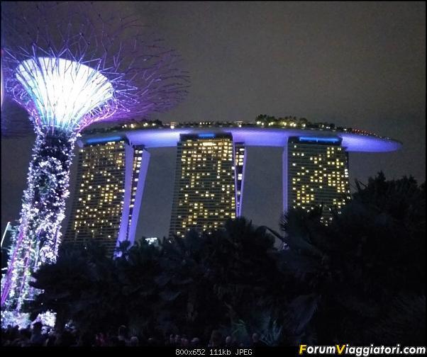 [Singapore e Borneo Malese] - Sulle tracce di Sandokan - Agosto 2017-img_20170805_200318-2-.jpg