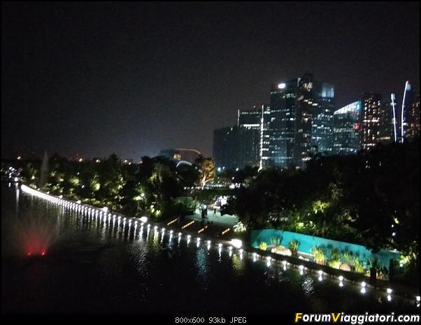 [Singapore e Borneo Malese] - Sulle tracce di Sandokan - Agosto 2017-img_20170805_214115.jpg
