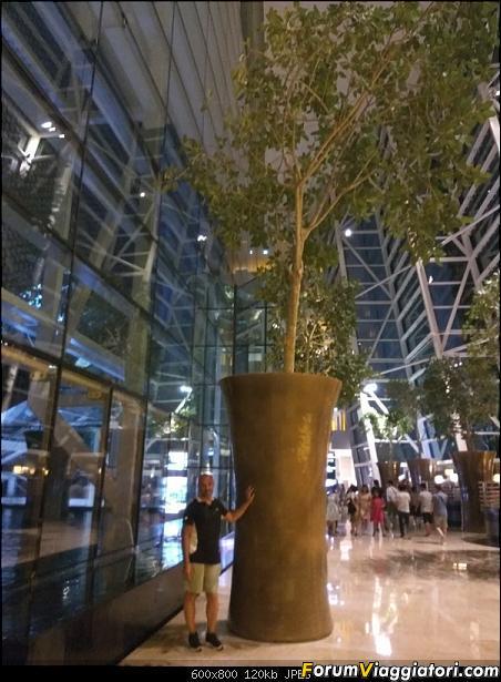 [Singapore e Borneo Malese] - Sulle tracce di Sandokan - Agosto 2017-img_20170805_221718.jpg