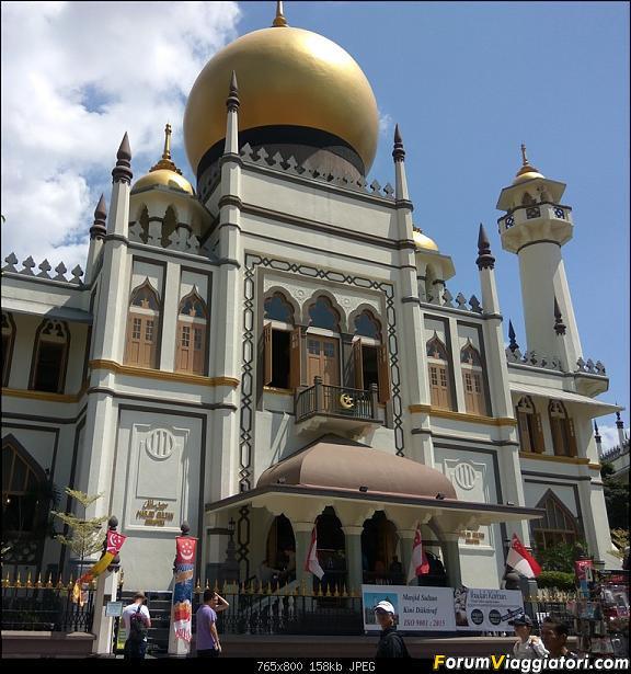 [Singapore e Borneo Malese] - Sulle tracce di Sandokan - Agosto 2017-img_20170806_115034-2-.jpg