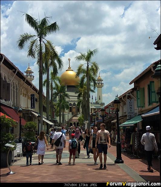 [Singapore e Borneo Malese] - Sulle tracce di Sandokan - Agosto 2017-img_20170806_131305-2-.jpg