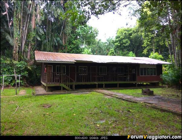 [Singapore e Borneo Malese] - Sulle tracce di Sandokan - Agosto 2017-img_20170807_101915.jpg