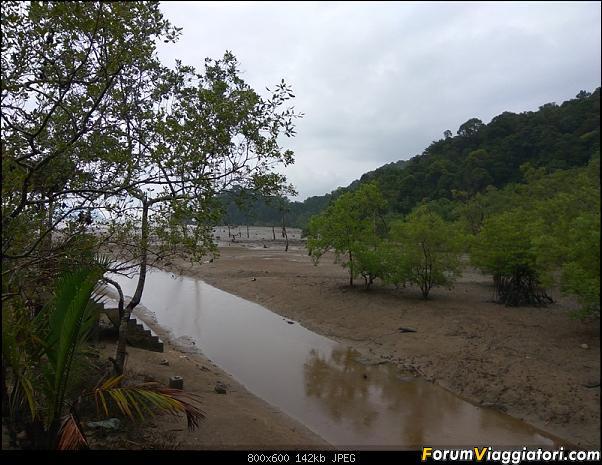 [Singapore e Borneo Malese] - Sulle tracce di Sandokan - Agosto 2017-img_20170807_104016.jpg
