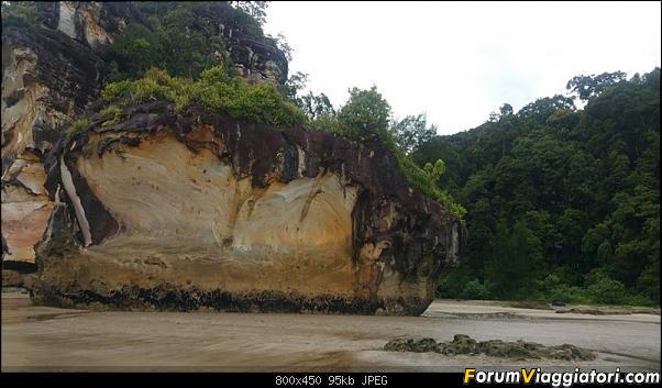 [Singapore e Borneo Malese] - Sulle tracce di Sandokan - Agosto 2017-20170807_093755-800-x-450-.jpg