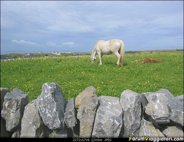 2 settimane nella verde IRLANDA-117-.jpg