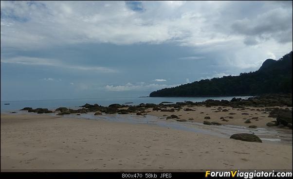 [Singapore e Borneo Malese] - Sulle tracce di Sandokan - Agosto 2017-img_20170809_092659.jpg