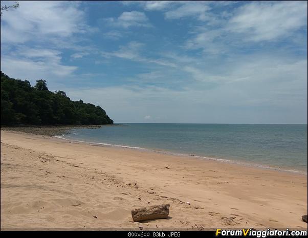 [Singapore e Borneo Malese] - Sulle tracce di Sandokan - Agosto 2017-img_20170809_132322.jpg