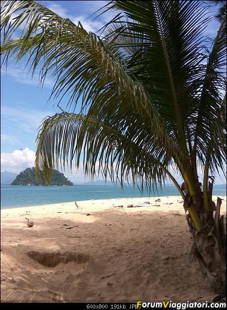 [Singapore e Borneo Malese] - Sulle tracce di Sandokan - Agosto 2017-img_20170809_132412.jpg