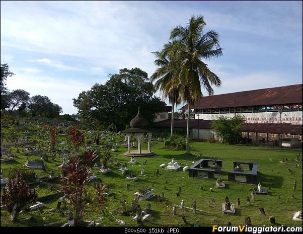 [Singapore e Borneo Malese] - Sulle tracce di Sandokan - Agosto 2017-img_20170809_164741.jpg