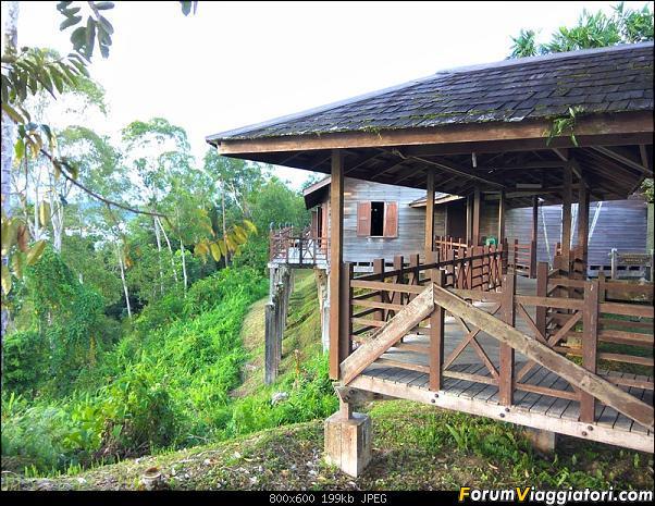 [Singapore e Borneo Malese] - Sulle tracce di Sandokan - Agosto 2017-img_20170810_175054-2-.jpg