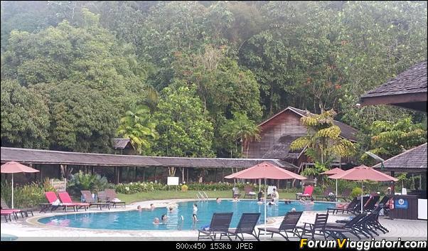 [Singapore e Borneo Malese] - Sulle tracce di Sandokan - Agosto 2017-20170810_181027-800-x-450-.jpg