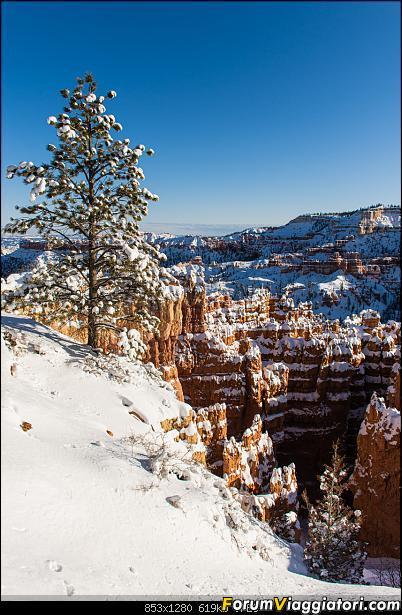 """La neve sul Bryce Canyon AKA """"Che meraviglia!"""" - Dic 2019-d72_2385.jpg"""