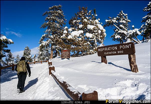 """La neve sul Bryce Canyon AKA """"Che meraviglia!"""" - Dic 2019-zz6_3194.jpg"""