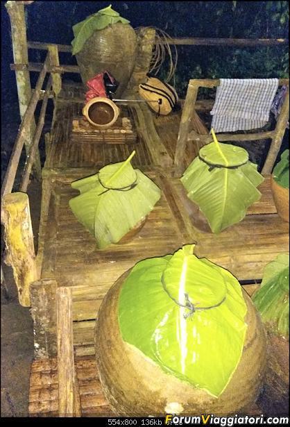 [Singapore e Borneo Malese] - Sulle tracce di Sandokan - Agosto 2017-img_20170813_184209-2-.jpg