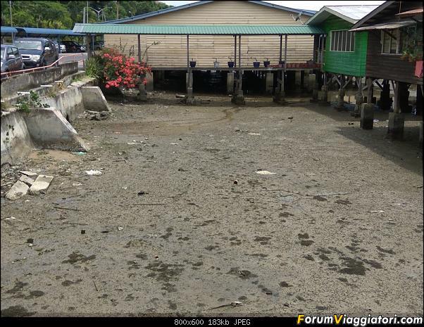 [Singapore e Borneo Malese] - Sulle tracce di Sandokan - Agosto 2017-img_20170816_120131.jpg