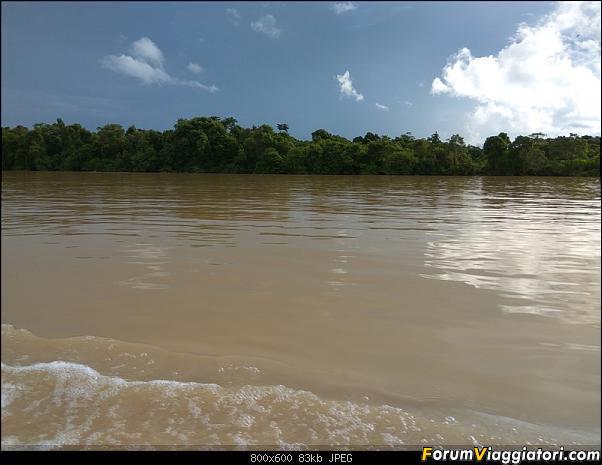 [Singapore e Borneo Malese] - Sulle tracce di Sandokan - Agosto 2017-img_20170816_164351.jpg